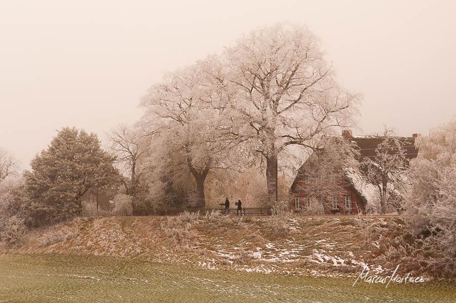 Altengamme in Vierlande