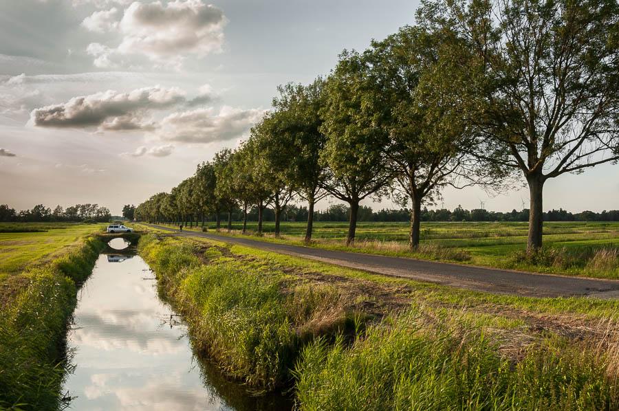 Feldstegel in Neuengamme
